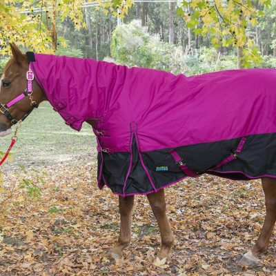 Warm Blanket pink full length