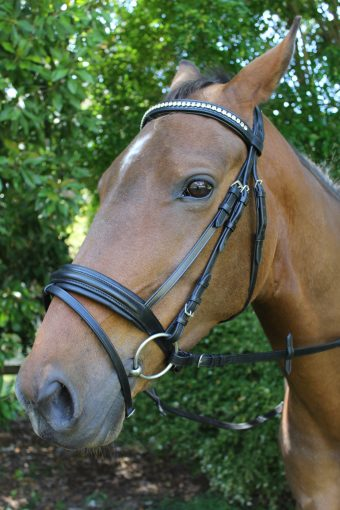 Camelot Hanovarian Bridle with Crystal broadband