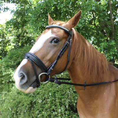 Black Bridle with V Shaped crystal Browband